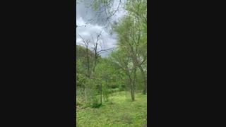پارک جنگلی rock creek در ایالت مریلند