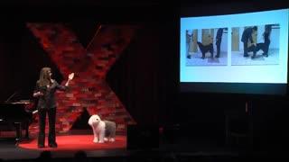How Dogs Tell Us What We Need to Know | Barbara Sherman | TEDxSandhillsCommunityCollege