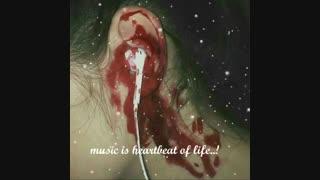موسیقی نبض زندگیه..