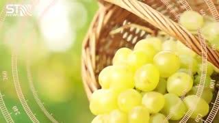 خواص انگور و فواید این میوه بهشتی