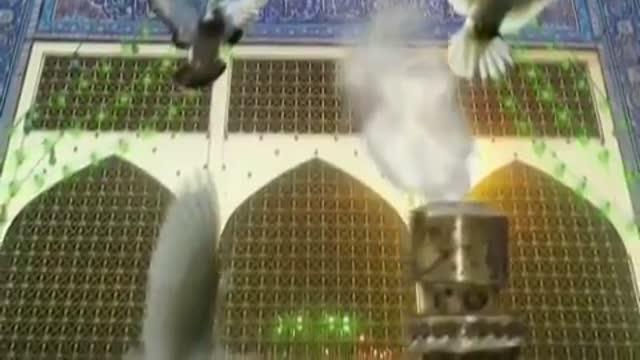 نماهنگ: آرامش دلها مولا یا امام رضا به مناسبت دهه کرامت