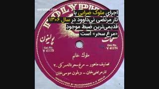 اجرای آهنگ ایرانی مرغ سحر